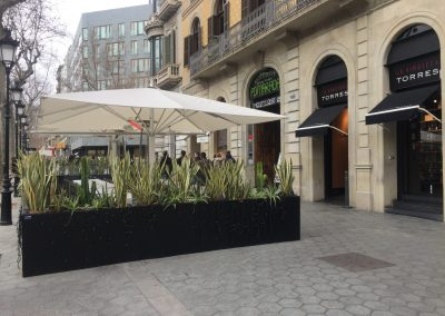 conillas-jardineria-diseno-terraza-y-decoracion-floral-restaurante-bodega-torres-barcelona-21