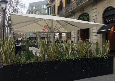 conillas-jardineria-diseno-terraza-y-decoracion-floral-restaurante-bodega-torres-barcelona-24