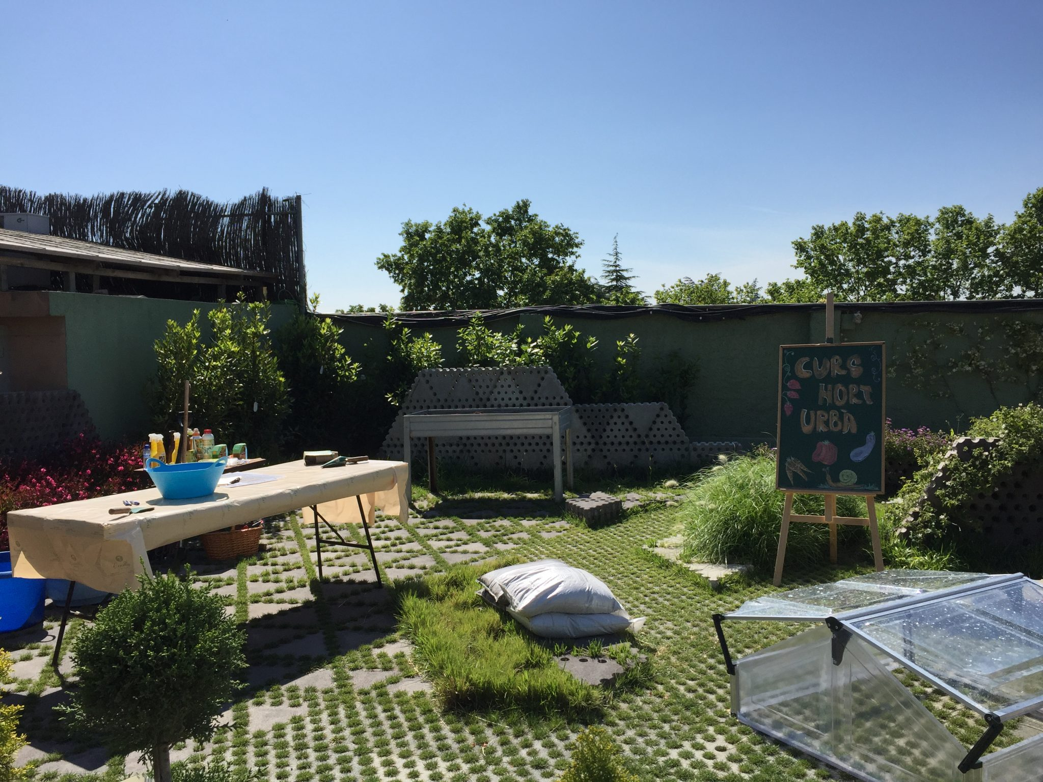 conillas-taller-huerto-urbano-ecologico-16