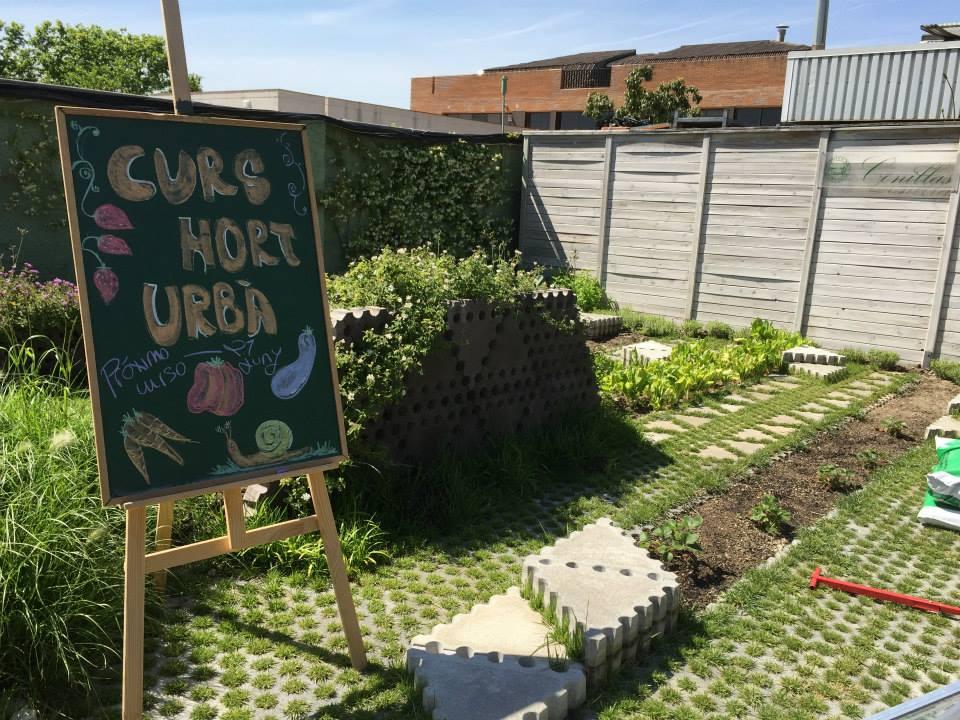 conillas-taller-huerto-urbano-ecologico-3