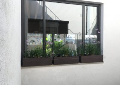 25-conillas-paisajismo-y-jardineria-proyecto-terraza-en-paseo-de-gracia