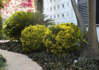 conillas-jardineria-proyectos-jardin-pineda-12