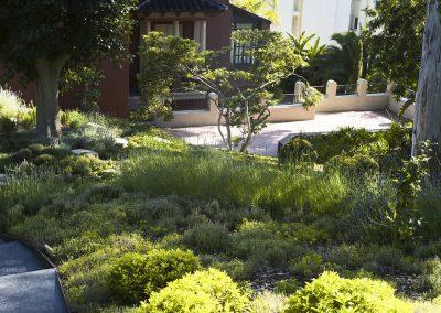 conillas-jardineria-y-paisajismo-proyecto-de-paisajismo-de-una-propiedad-privada-en-Sant-Gervasi-13