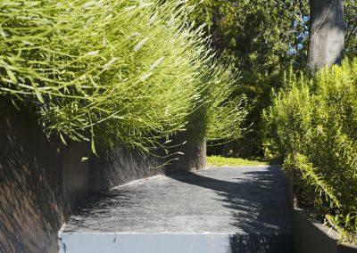 conillas-jardineria-y-paisajismo-proyecto-de-paisajismo-de-una-propiedad-privada-en-Sant-Gervasi-14