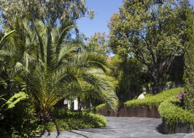 conillas-jardineria-y-paisajismo-proyecto-de-paisajismo-de-una-propiedad-privada-en-Sant-Gervasi-24